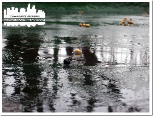 Lluvia en Montevideo